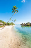 Travel paradise. Vertical shot of a beach in Tahiti. Bungalows on the back Royalty Free Stock Photo
