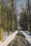 Travel path through the forrest of st. poelten in winter season. Picture of the travel path through the forrest of st. poelten in winter season Royalty Free Stock Photography