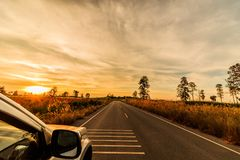 Travel with a pickup truck on the street under the morning sun. Travel with a pickup truck on the street under the morning sun Royalty Free Stock Photo