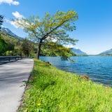 Summer gorgeous landscape along the lake . Stock Image