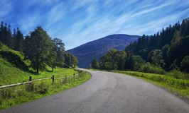 Travel road on the field with green grass and blue sky with clouds on the farm in beautiful summer sunny day. Clean, idyllic, lan stock photography