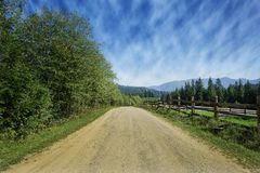 Travel road on the field with green grass and blue sky with clouds on the farm in beautiful summer sunny day. Clean, idyllic, land. Scape with sun stock images