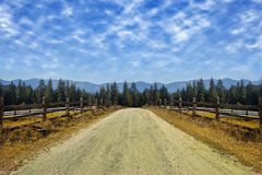Travel road on the field with yellow autumn grass and blue sky with clouds on the farm in beautiful summer sunny day. Clean, idyll royalty free stock images