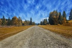 Travel road on the field with yellow autumn grass and blue sky with clouds on the farm in beautiful summer sunny day. Clean, idyll stock photography