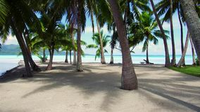 Palm trees on tropical beach in french polynesia. Travel, seascape and nature concept - tropical beach with palm trees and sunbeds in french polynesia stock video footage