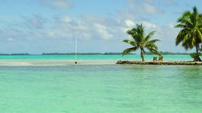 Tropical beach with palm trees and sunbeds. Travel, seascape and nature concept - tropical beach with palm trees and sunbeds in french polynesia stock footage