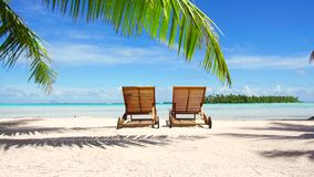 Two sunbeds on tropical beach in french polynesia. Travel, seascape and nature concept - two wooden sunbeds on tropical beach in french polynesia stock video footage