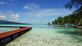 Wooden pier on tropical beach in french polynesia. Travel, seascape and nature concept - wooden pier on tropical beach in french polynesia stock video
