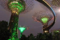 Travel singapore. Big tree marina royalty free stock image