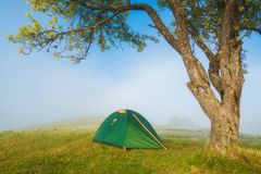 Travel tent under the tree on a green meadow royalty free stock photos
