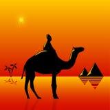 Travel to Africa Stock Photos