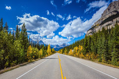 Travel to the Canadian Rockies. Excellent highway and surrounded by autumnal woods. Travel to the Bow River Canyon in September. Canadian Rockies, Great Banff stock images