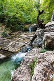 Rapids on Ulu-Uzen river in Haphal Gorge in autumn Stock Photos