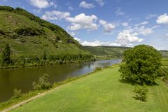Travel to Germany - view of valley of Mosel river in Cochem - Zell region on Moselle wine route in sunny summer day stock photography