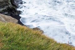 Green grass on edge of cliff in Iceland Stock Photos