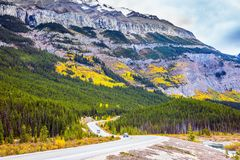 Travel to the Rockies of Canada. The road 93 `Icefields Parkway`. The concept of active and autotourism royalty free stock photos