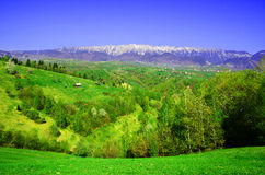 Travel to Romania: Spring in Piatra Craiului Mount Stock Photo