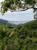 Landscape with tropical vegetation and view of the bay of Acapulco from a mountain. Travel and tourism in Mexico, backdrop for environmental and nature ads royalty free stock image