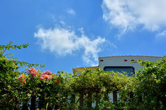 Travel trailer stay in camp under blue sky. Part of travel trailer under blue sky, in camp with plant, shown as enjoy wonderful trip and holiday, or featured Royalty Free Stock Images