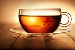 Tea Cup Travel Tropical Coffee Background. A glass cup of tea or coffee with a tropical scene coming through the cup on a warm wood background. Please see my Tea Royalty Free Stock Images