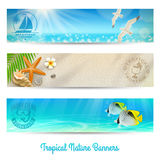 Travel and vacation banners. With tropical natures Royalty Free Stock Photos
