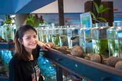 Travelerмолодой женщинынаблюдая воюя рыбу в бутылках на Стоковое Фото