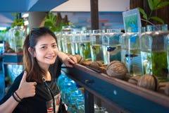Travelerмолодой женщинынаблюдая воюя рыбу в бутылках на Стоковая Фотография RF