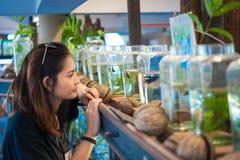 Travelerмолодой женщинынаблюдая воюя рыбу в бутылках на Стоковая Фотография