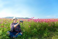 Traveler Asian women sitting and take a photo in the flower field and hand touch cosmos flower, freedom and relax in the flower me Royalty Free Stock Image