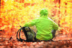 Traveler with backpack in forest. Tourist with a backpack in the woods Royalty Free Stock Photo