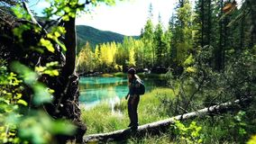 Traveler with backpack and hat is walking along a fallen tree by the blue mountain lake in the forest stock footage