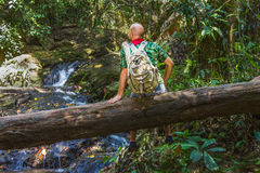 Traveler with a backpack on a log in the jungle Stock Photography