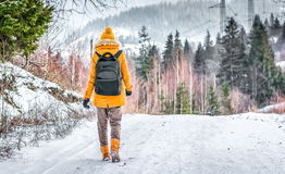 Traveler with a backpack walking on snow covered road in winter forest Stock Images