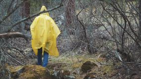 Traveler is clothed in a yellow raincoat. Rear back view of young female hiker walking on trek with backpack through. Dense rain forest nature. Young girl stock footage