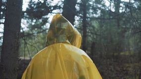 Traveler is clothed in a yellow raincoat. Rear back view of young female hiker walking on trek with backpack through stock video footage