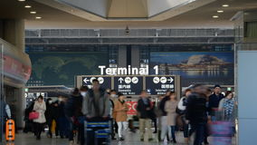 Traveler crowd at airport stock video footage