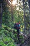 Traveler among dense green forest Stock Photography