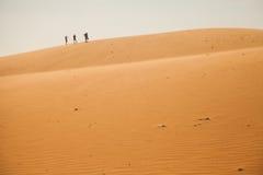 The traveler in the desert Royalty Free Stock Images