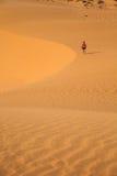 The traveler in the desert Stock Image