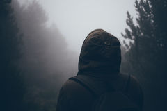 Traveler in a fog. Foggy forest Stock Photography