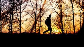 Traveler goes on the road with backpack during sunset  silhouette of the trees background Royalty Free Stock Image