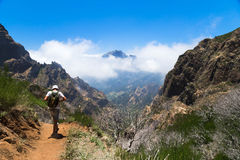 The traveler goes on a track highly in the mountains of Madeira Royalty Free Stock Photography