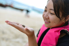 Traveler with hermit crab. Girl look the small hermit crab on hand her hand, Thailand beach Stock Photography