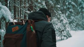 Traveler hiker walking on snow covered pathway in woods on winter day. Traveler hiker in warm clothes and backpack walking on snow covered pathway in pine woods stock footage