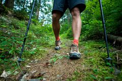Traveler in hiking boots with trekking poles walks in the forest Royalty Free Stock Photos