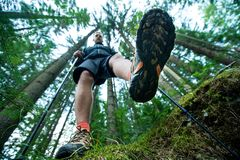 Traveler in hiking boots with trekking poles walks in the forest Royalty Free Stock Photo