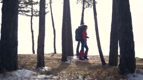 The traveler hiking in forest. Female with backpack hiking in forest. Slow motion. The traveler silhouette. female with backpack hiking in forest. HD stock video footage