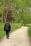 Traveler. Lone, male, senior citizen rambles along a woodland path Stock Image