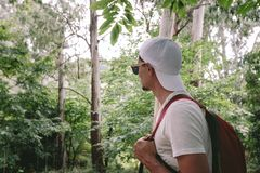 Man with backpack walking in the forest stock photography