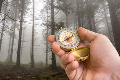Traveler man with compass seeking a right way in the forest Stock Image
